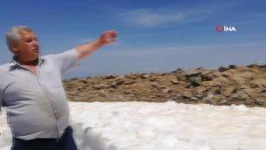 Yaz Ayında Kar Helvası Yaparak Parasını Kazanıyor