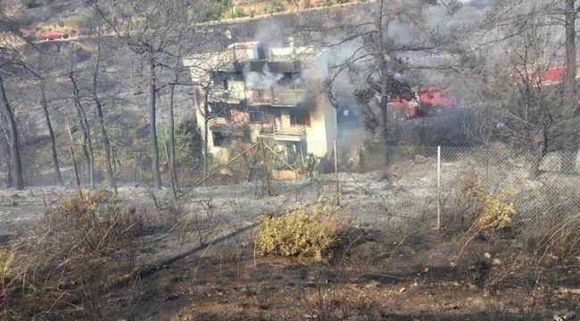 Balçova'da Zeytinlik Alan Yandı