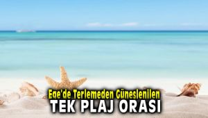 Ege'de Terlemeden Güneşlenilen Tek Plaj Pırlanta Plajı