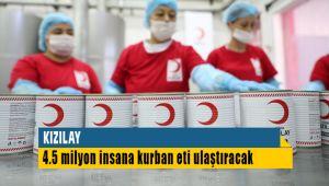 Türk Kızılay'ı 4.5 Milyon Kişiye Kurban Eti Dağıtacak