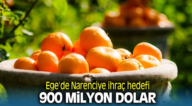 Ege'de Narenciye Hedefi 900 Milyon Dolar