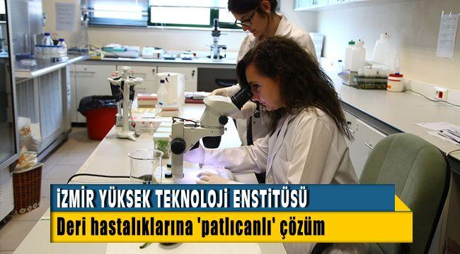İzmir Yüksek Teknoloji Enstitüsü Deri Hastalıklarına Patlıcandan Çözüm Üretti