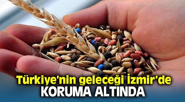 Tohum Gen Bankası'nda, yerli tohumlar İzmir'de 100 yıl korunacak