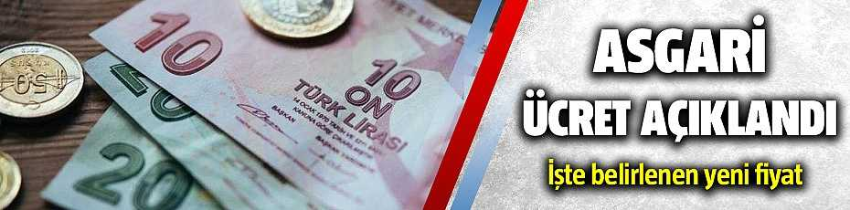 Asgari ücret 2020 Ne Kadar Oldu ?