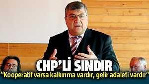 CHP İzmir Milletvekili Kamil Okyay Sındır,