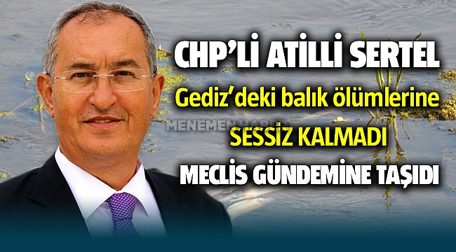 CHP'li Atilla Sertel Balık Ölümlerine Sessiz Kalmadı