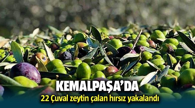 Kemalpaşa'da 22 çuval zeytin çalan hırsız yakalandı