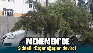 Menemen'de rüzgarın etkisiyle ağaç arabanın üzerine devrildi