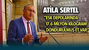 Atila Sertel