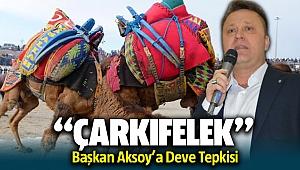 Başkan Aksoy'a deve tepkisi! ÇARKIFELEK..