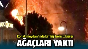 İzmir Konak'ta ağaçları yaktılar! Abdül Batur'dan tepki