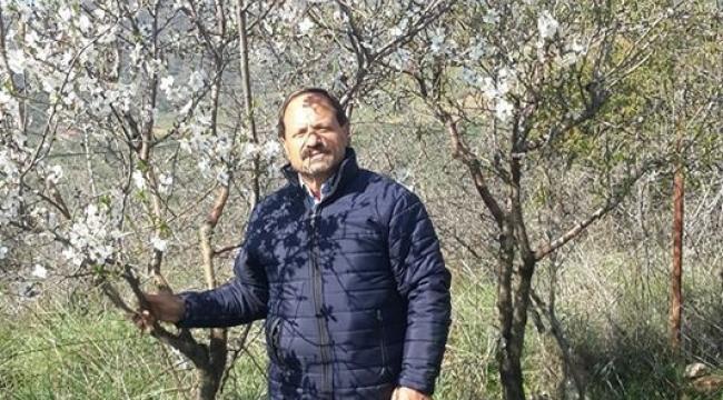 İzmir'de badem ağacı çiçek açtı