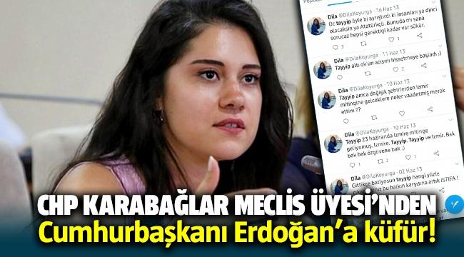 CHP Meclis Üyesi Dila Kayurga'dan Cumhurbaşkanına küfür!