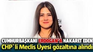 Cumhurbaşkanı Eroğan'a hakaret eden CHP'li Belediye Meclis üyesi koyurga gözaltına alındı