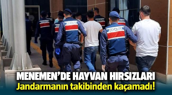 Menemen'de hayvan hırsızları Jandarmanın takibinden kaçamadı