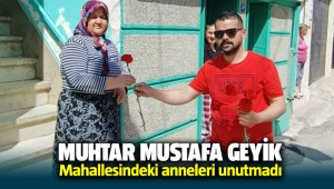 Muhtar Mustafa Geyik mahallesindeki anneleri unutmadı