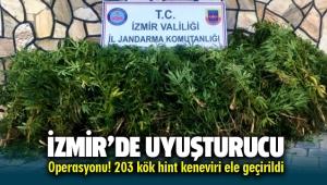 İzmir Torbalı'da bahçe de uyuşturucu operasyonu