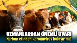 Kurban etinden koronavirüs bulaşır mı ? Uzman isimden önemli uyarılar