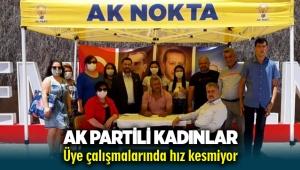 AK Partili kadınlar üye çalışmalarında hız kesmiyor