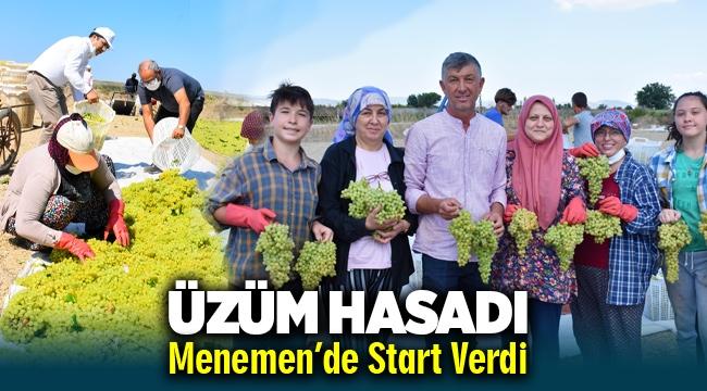Üzüm Hasadı Menemen'de Start Verdi