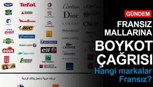 Fransız Malları Boykot Listesi, Hangi Markalar Fransız ?