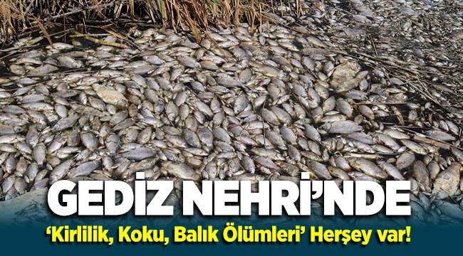 Gediz Nehri'nde 'Koku, Kirlilik, Balık Ölümleri' Herşey Var!