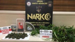 Giresun'da uyuşturucu operasyonunda 1 kişi tutuklandı