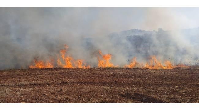 Antalya'da makilik alanda yangın