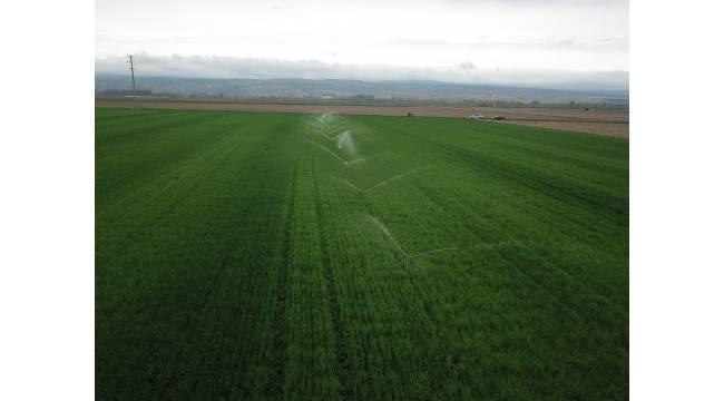 Eskişehir'de 325 bin 500 dekar tarım arazisi sulandı, ekonomiye 705 milyon TL katkı sağlandı