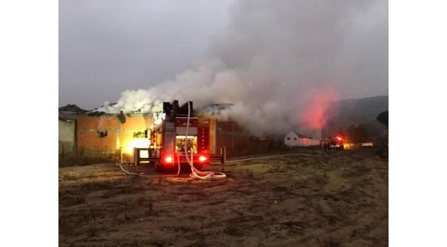 Gökçeyazı'da yangında bin 500 balya saman ile bir buzağı telef oldu