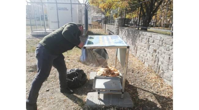 Kars'ta belediye sokak hayvanlarını unutmadı