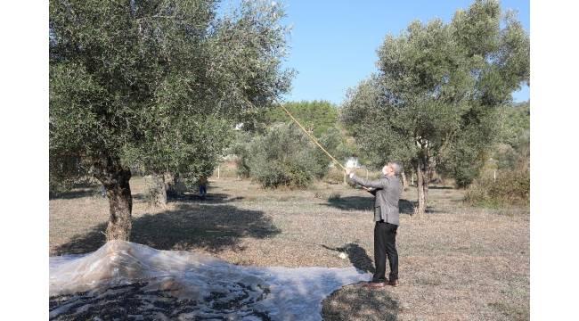 Marmaris Belediyesi tarımsal gelişmeye önem veriyor