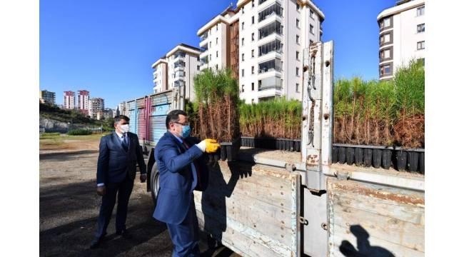 Ortahisar Belediyesi'nden Antakya Belediyesi'ne 4 bin 61 adet fidan bağışında bulundu
