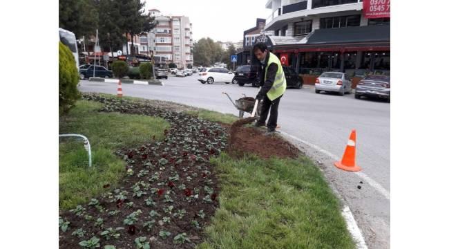 Safranbolu Belediyesi kenti çiçeklerle donattı