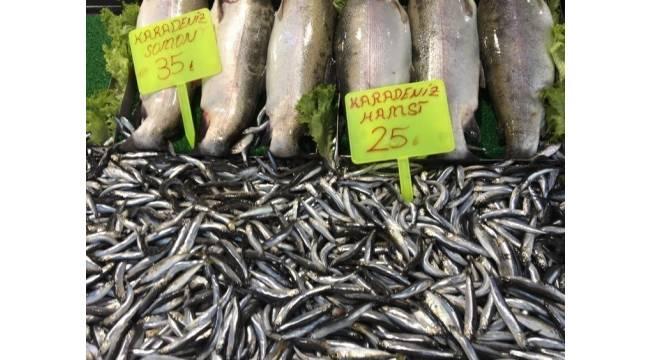 Tokat'ta hamsi fiyatları düşüşe geçti