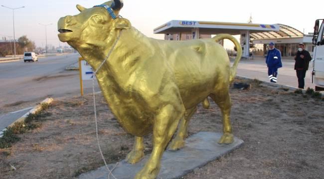 'Charging Bull'a Amasya'dan yeni rakip