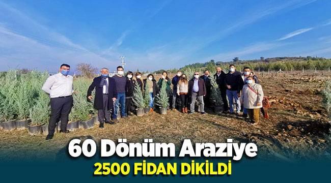 İzmir'de Çocuklar Adına 2500 Fidan Dikildi