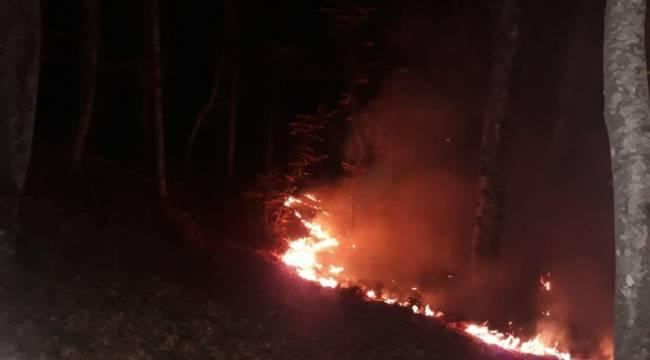 Karabük'te ormanlık alanda yangın