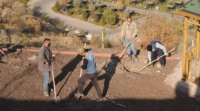 Kartaltepe Mesire Alanı ağaçlandırılıyor