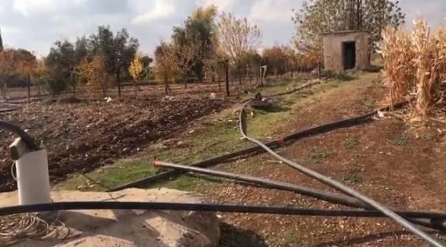 Mardin'de çiftçinin kaçak elektrik kullanımı pes dedirtti