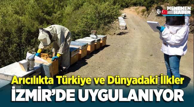 Arıcılıkta Türkiye ve dünyadaki ilkler İzmir'de uygulanıyor