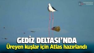 GEDİZ DELTASI'NDA ÜREYEN KUŞLAR İÇİN 'ATLAS' HAZIRLANDI