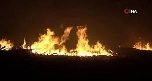 Mersin Erdemli'de araştırma enstitüsü bahçesinde 3 ayrı noktada yangın çıktı